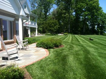 Professional Lawn Care In Annapolis, MD