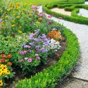 Beautiful flower bed from Crew Cut Lawn