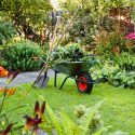 Landscaping maintenance in the summer